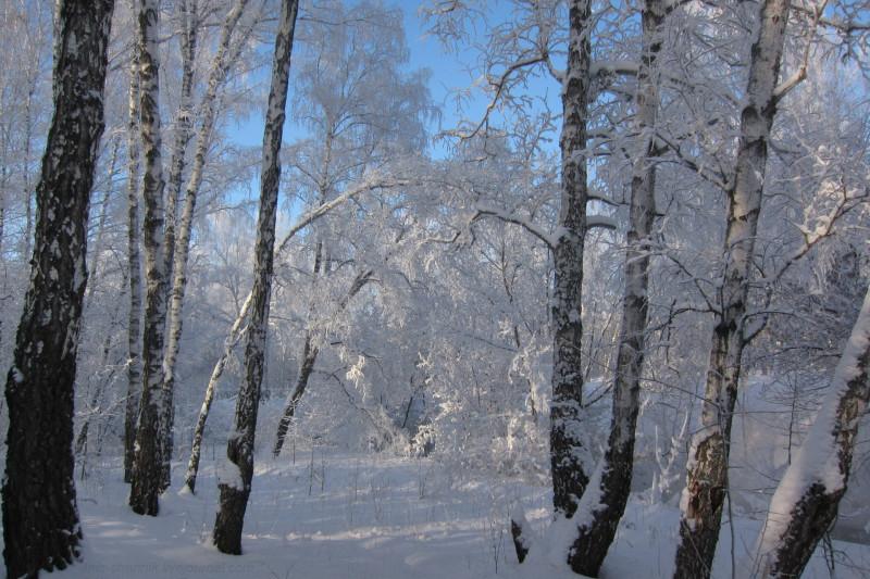 мороз 02.jpg