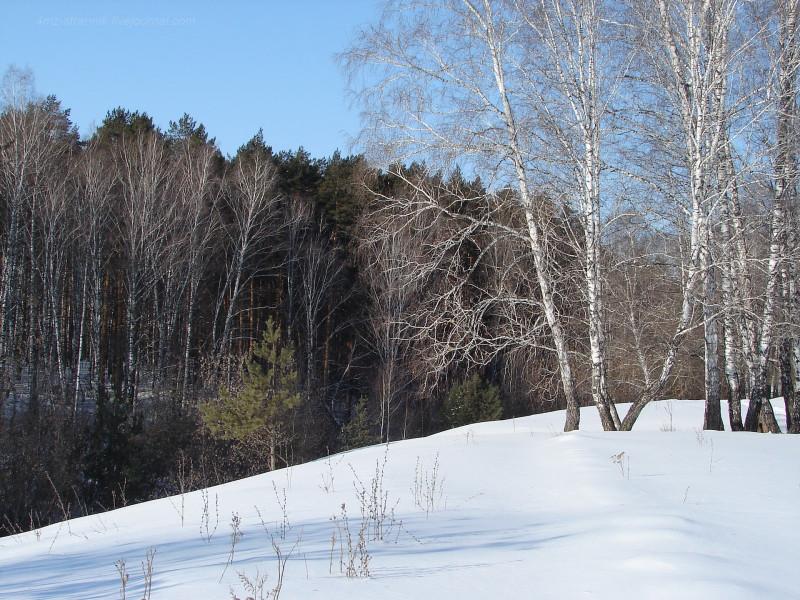 ski 01.jpg