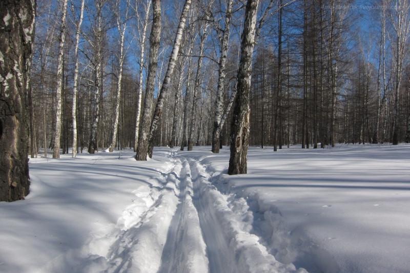 ski 10.jpg