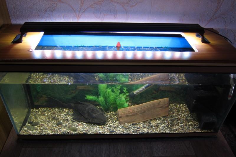 лампа аква.jpg