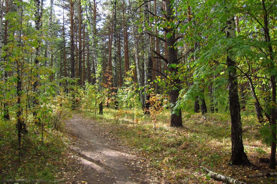 осень в Каштаке.jpg