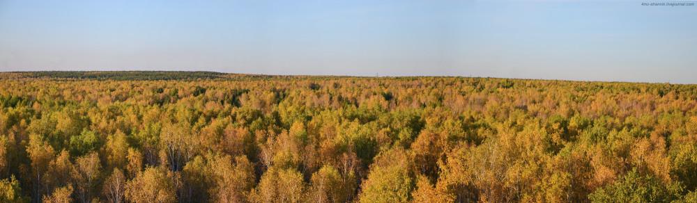 осень_панорама.JPG