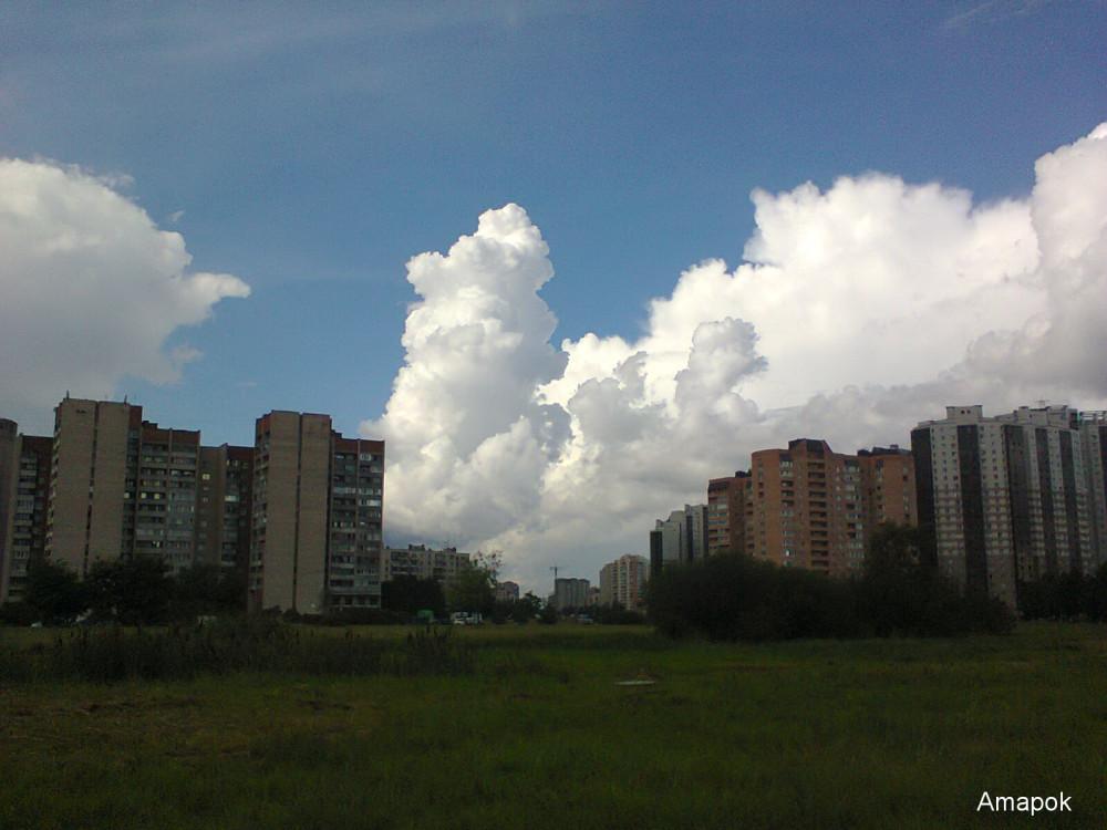 Фото0196