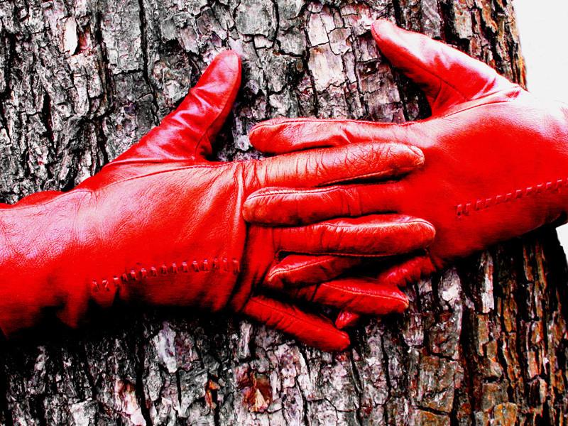 цвет дня красный