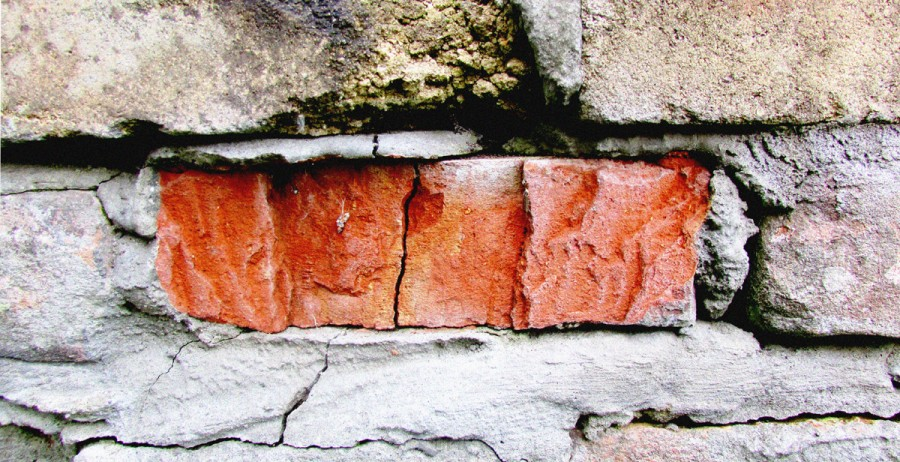 цвет дня оранжевый 1