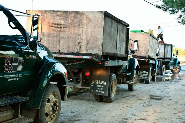 Cranberry Harvesting. Trucks in Line ©Yuri Lev
