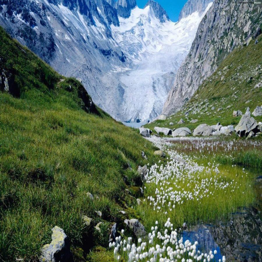 фото природа грузия
