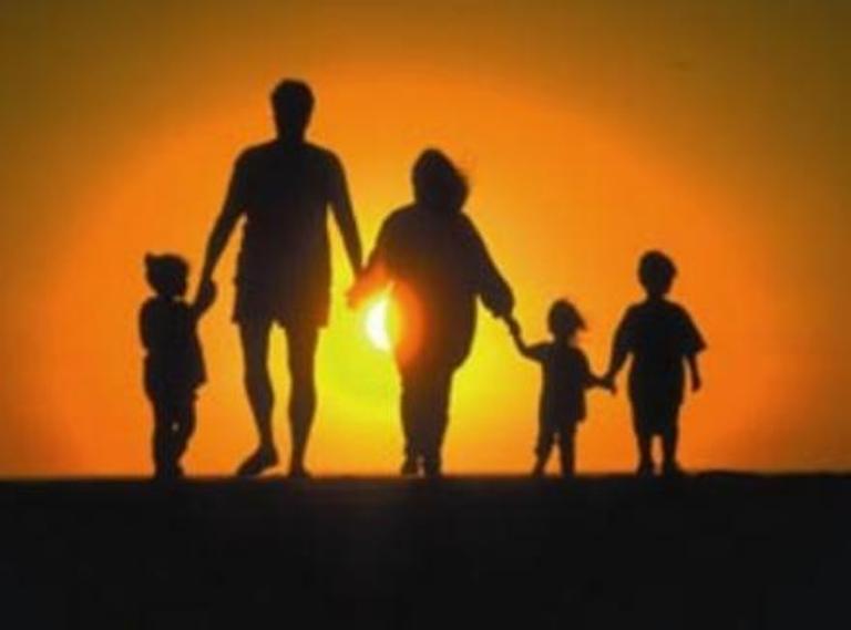 семья-года