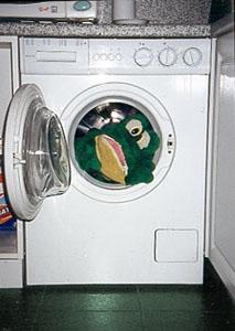 Жаба в стирке