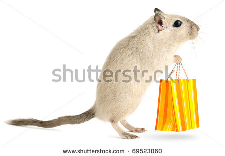 stock-photo-cute-little-gerbil-with-with-shopping-bag-isolated-on-white-background-69523060