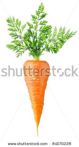 stock-photo-carrot-isolated-on-white-84070228