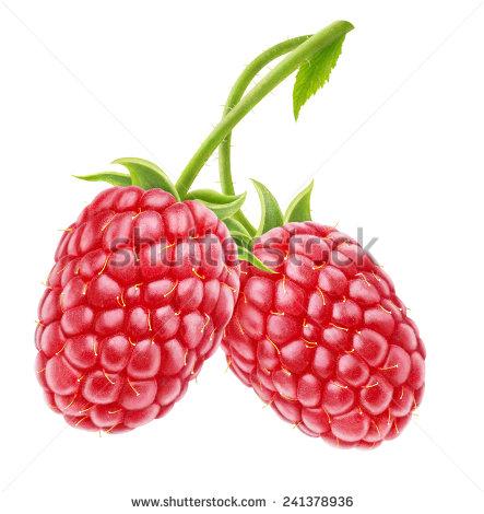 stock-photo-two-raspberries-isolated-on-white-241378936