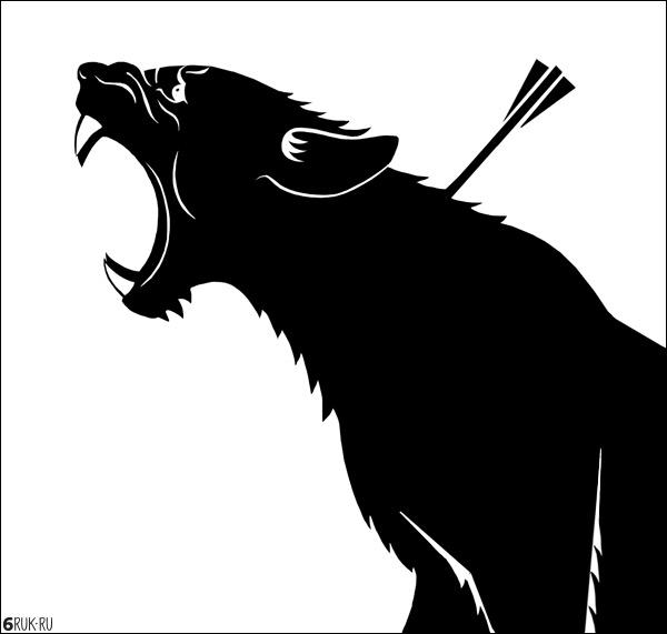 lioness2