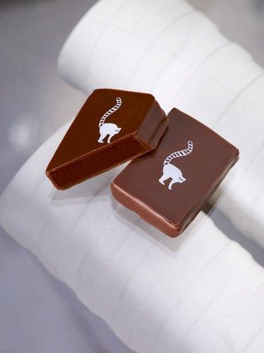 chocolat_lait_passion_27274-3656f