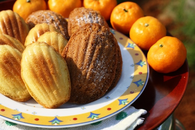 ChocolateMadeleines (1)