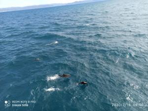 Солодовников Черное море-3.jpg