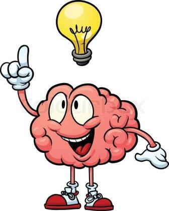 Мозг по долям.jpg