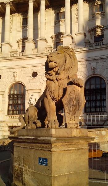 вена-лев