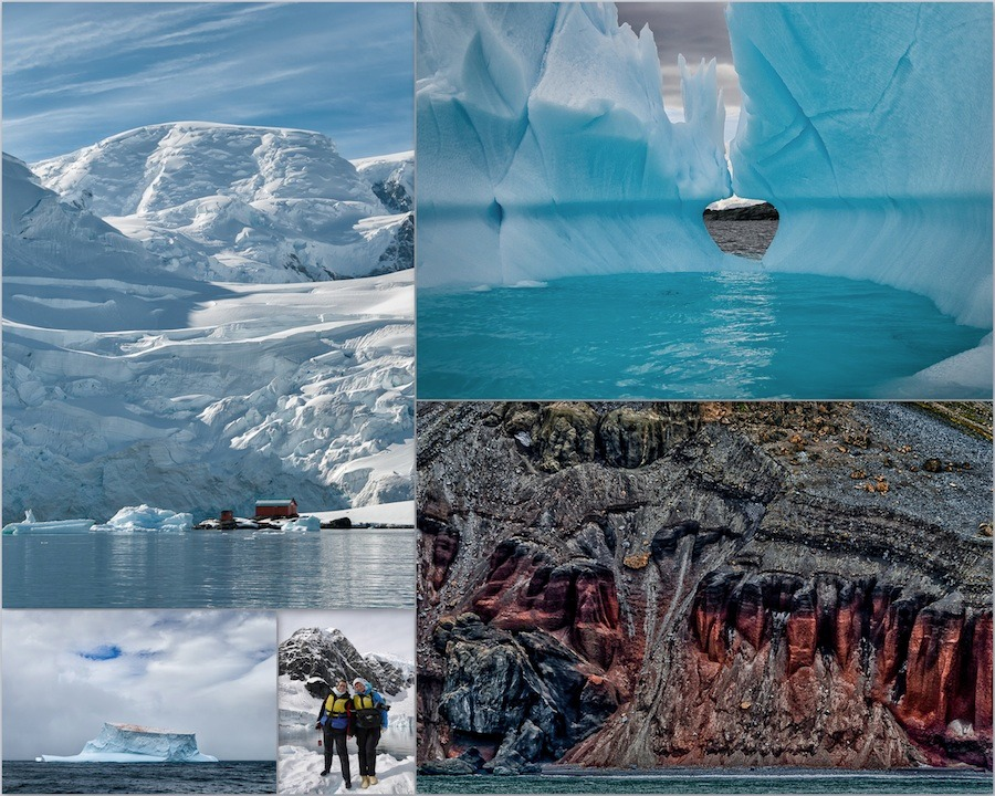antarctika-myzina