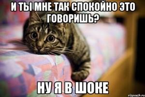 ya-v-shoke_14465087_orig_