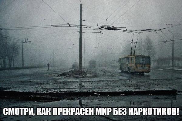 Шуточная картинка, но проблемы с климатом действительно присутствуют...