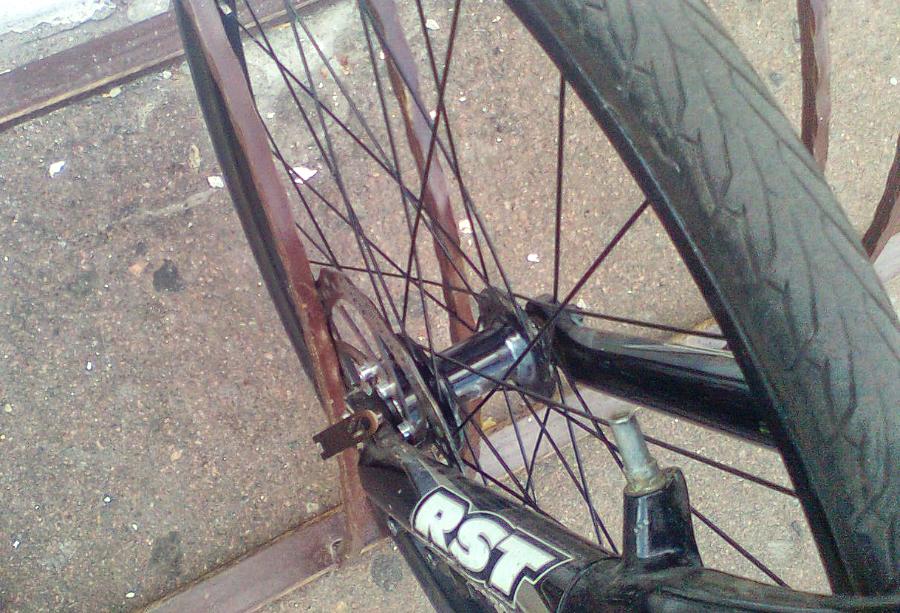 велодорожка4.jpg