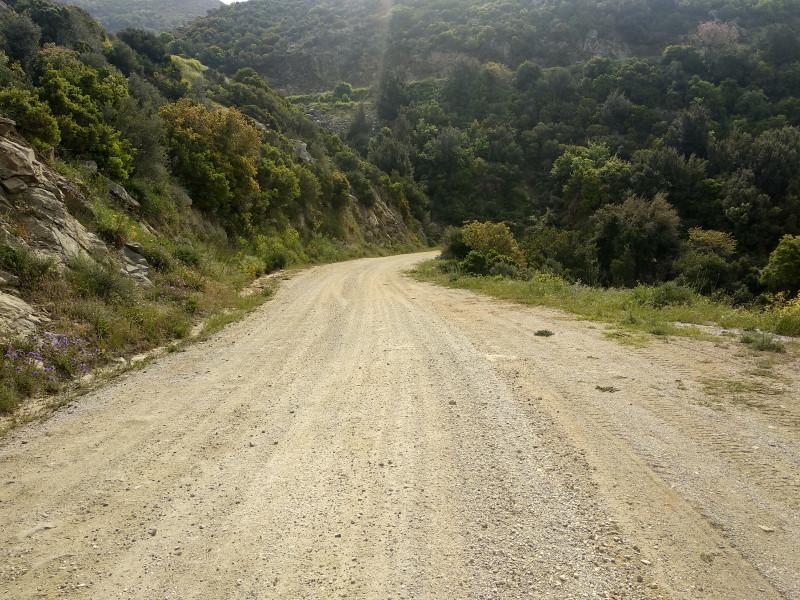 Спуск дороги к Дафни