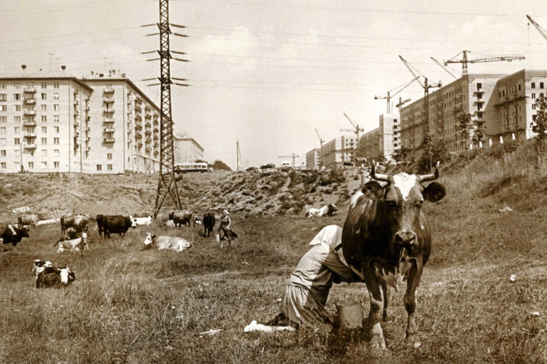 782875 Москва строится 54 Лев Бородулин