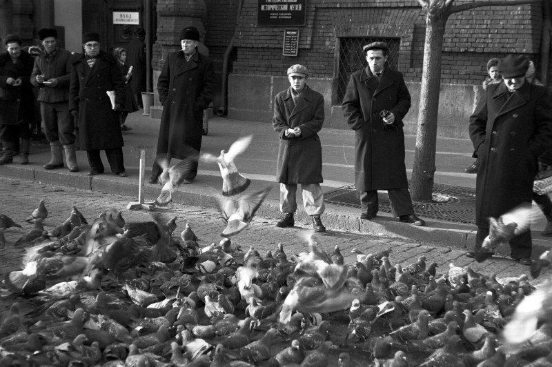 820497 Кормление голубей у Исторического музея 59 Philippe Le Tellier