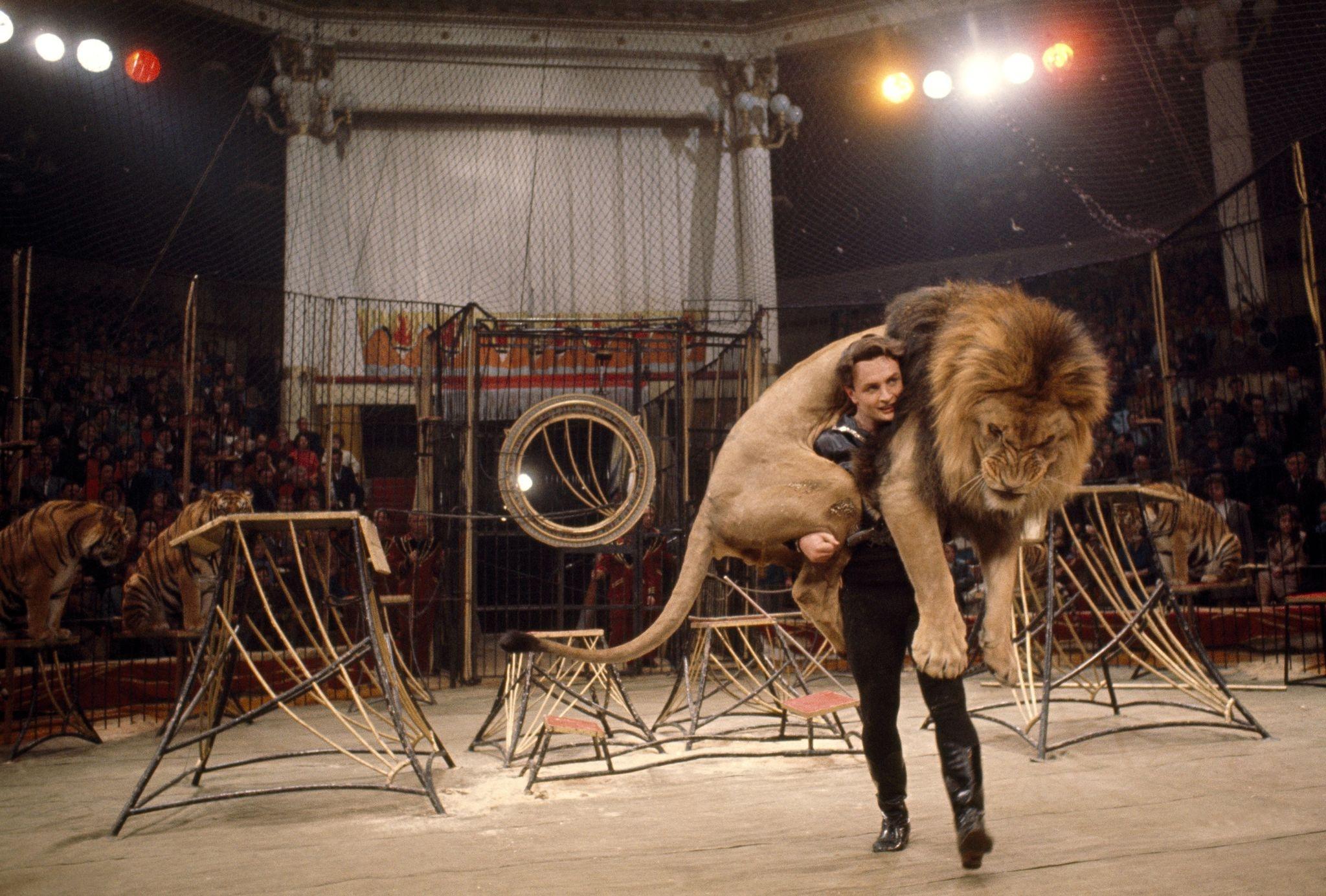 864910 Дрессировщик  Вальтер Запашный несет льва на арене цирка