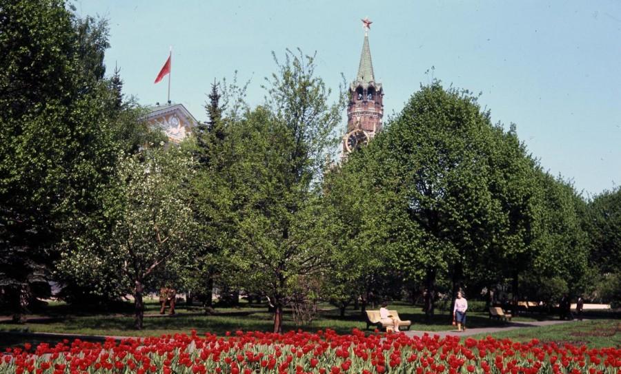 047 Большой Кремлевский сквер