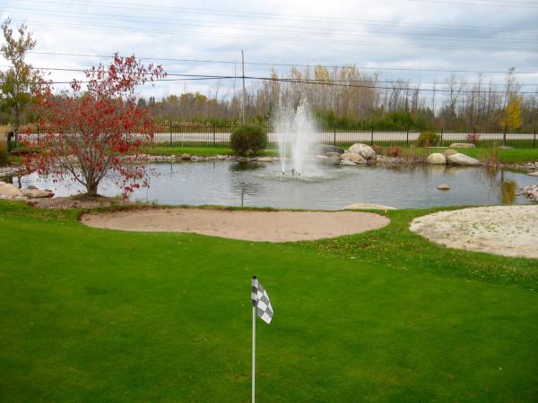 Поле для мини-гольфа
