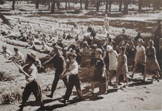 Летний сад и блокада Ленинграда