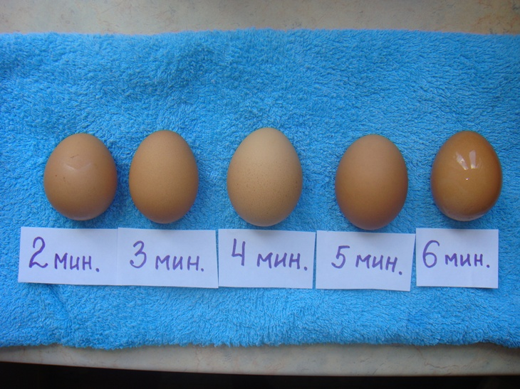яйцо в ряд