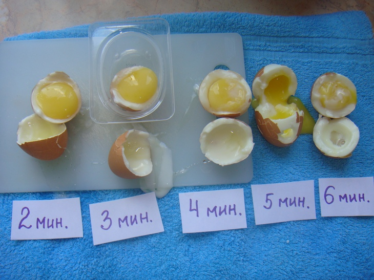 яйцо вскрытие