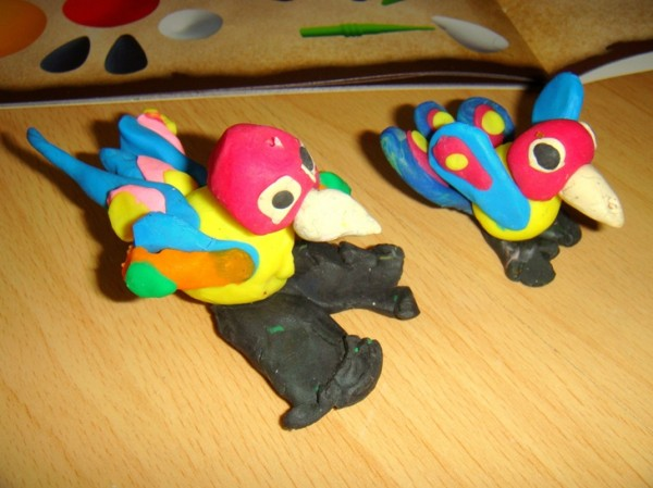 попугаи2!!!