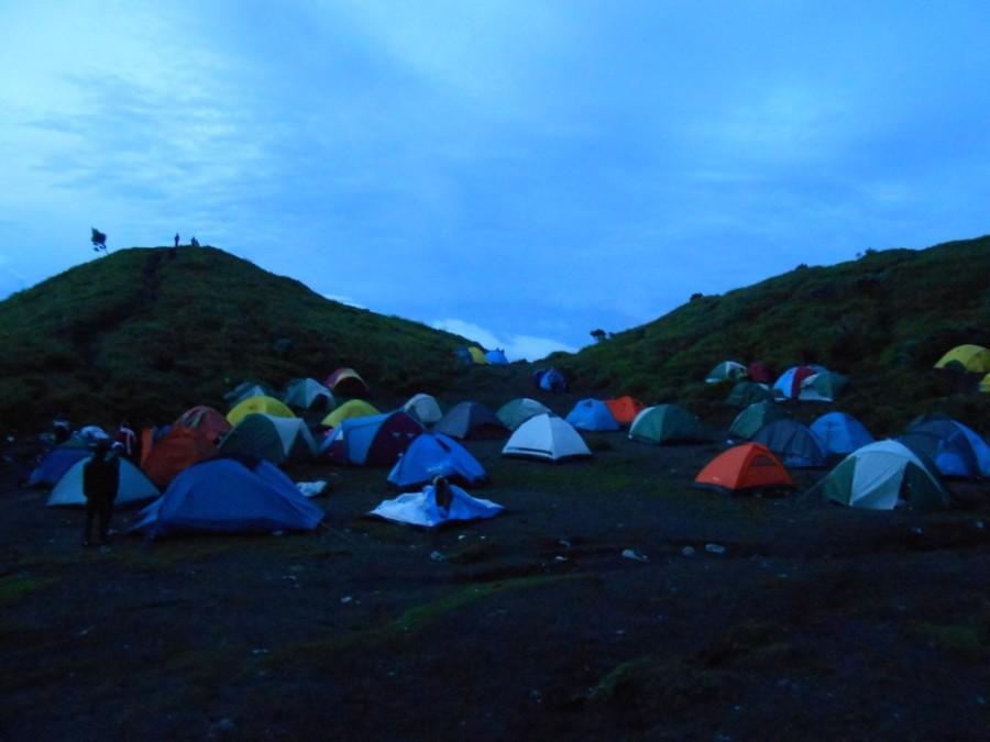 DSCN8784-рассвет палатки