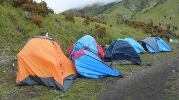 DSCN8862-палатки б.у.