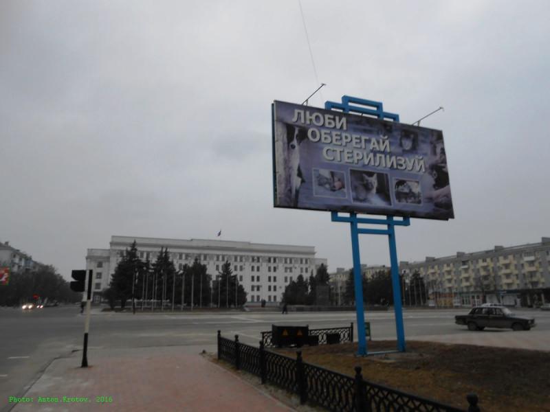 _Donbass-678