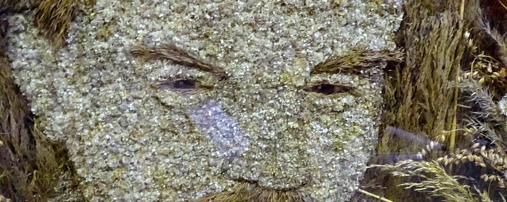 1970е-Портрет-В.И-Ленина-из-травы-и-цветов-Артемовский-исторический-музей--1