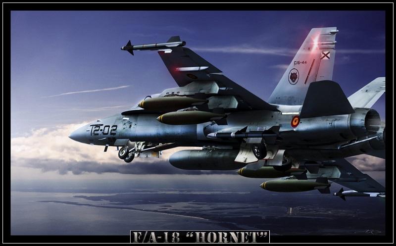 fa_18_hornet_by_roen911-d3d7znw.jpg
