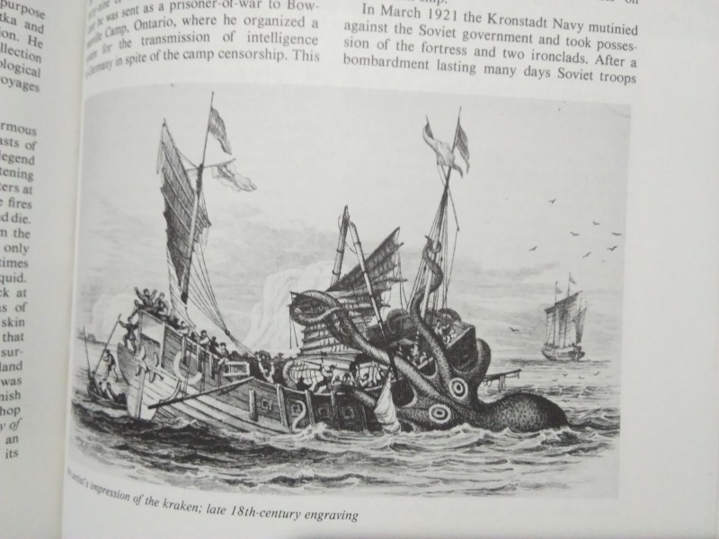 Группа Стройных Французских Туристов Трахается На Берегу Моря