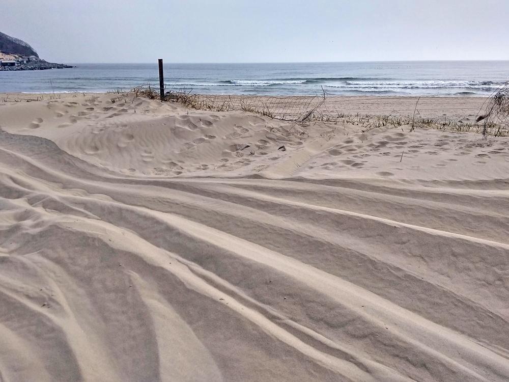 пески Шепалово1