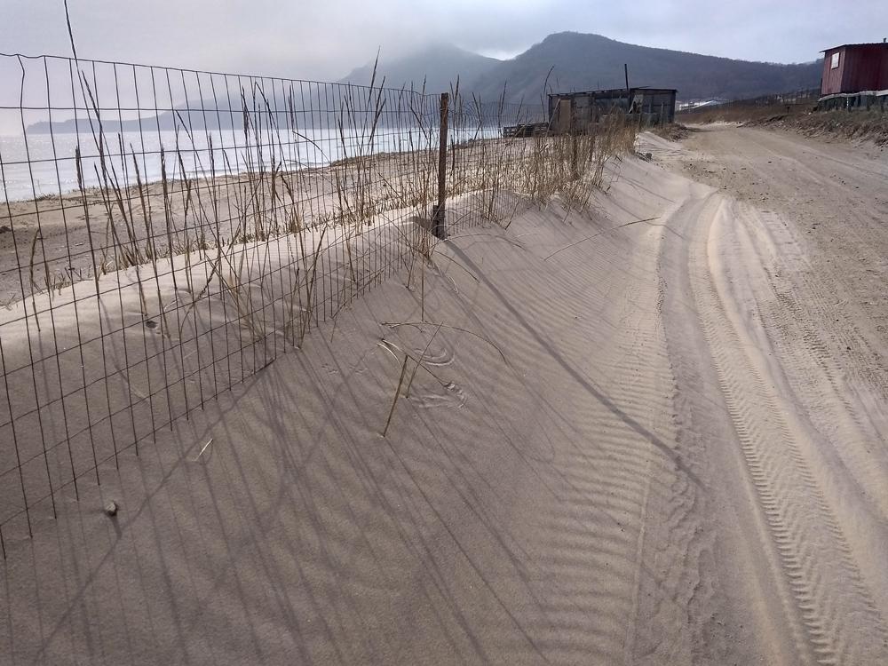 пески Шепалово2