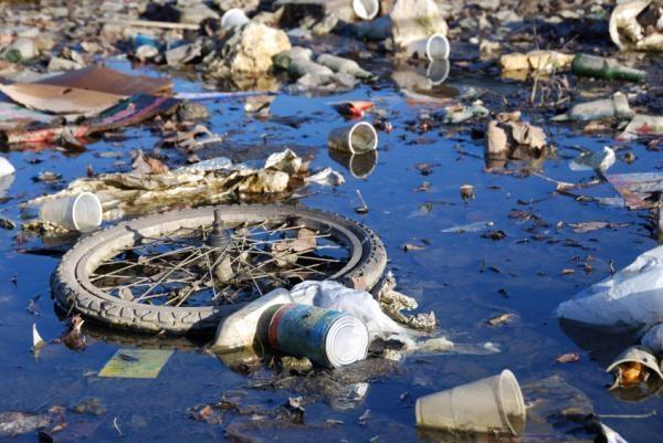 Экологи бьют тревогу: в Молдове практически не осталось чистых водоемов.