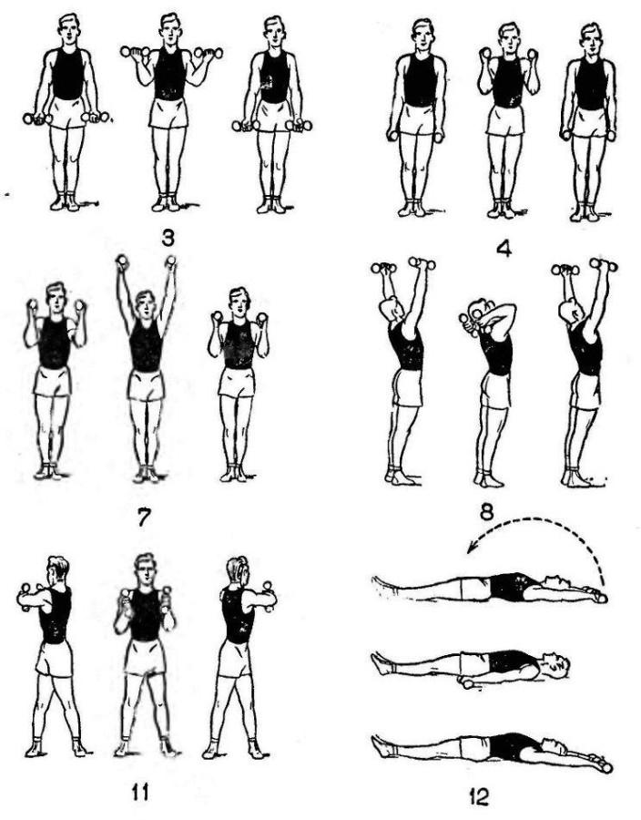 упражнения для рук в картинках для дома фотографии помогут