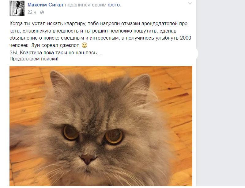 CatsRent