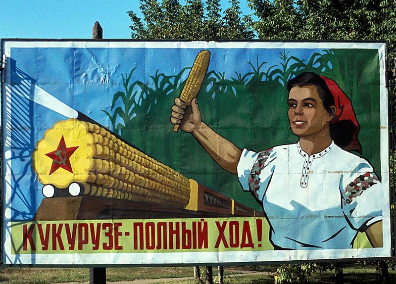 Corn_original