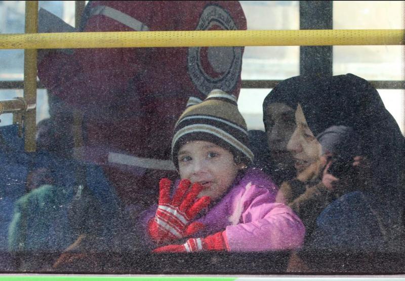Aleppo Refugee