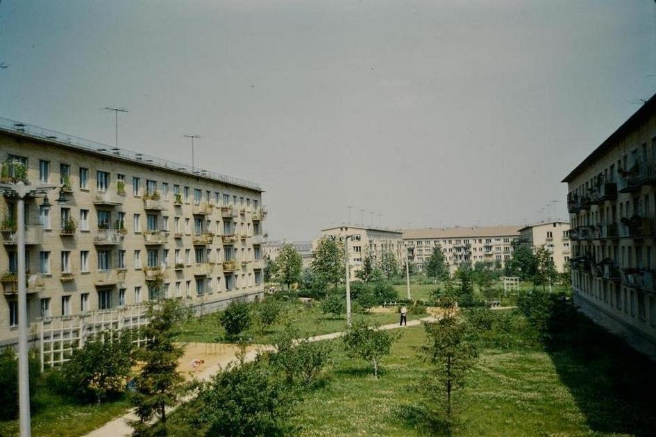 Dvor6